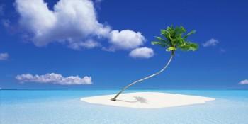 tropische-insel,-palme,-meer-158011