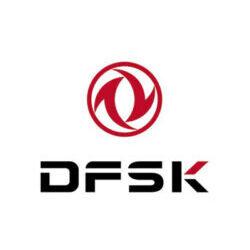 DFSK_logo